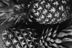 Art black and white photography. Healthy food. Black and white art photography monochrome, two ripe pineapple lying on a dark marble table. Delicious fruit royalty free stock image