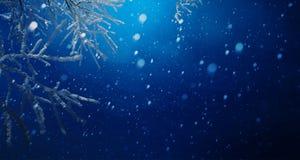 Art blue Christmas background; Snowy Christmas tree branch and s. Blue Christmas background; Snowy Christmas tree branch and snowy sky royalty free stock photo