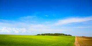 Art blue sky over farm green field Stock Photography