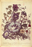 Art botanique de mur de style de vintage de fleurs avec le fond texturisé Photo libre de droits