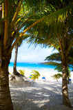 Art caribbean tropical sea beach Stock Photos