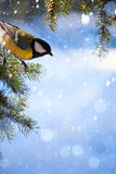 Art Christmas card with tits on the Christmas tree and snow Stock Images