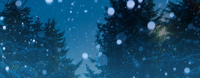 Art christmas winter background; snowy landscape Royalty Free Stock Photo