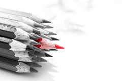Art of color pencil. Art of Red colour pencils in black and white group  on white background ,close up on red Stock Photo