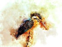 Art commun de Digital de martin-pêcheur illustration libre de droits