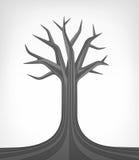 Art conceptuel mort d'arbre de tilleul d'isolement Photographie stock