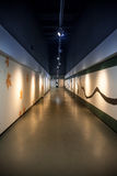 Art corridor in exhibition hall Stock Photos