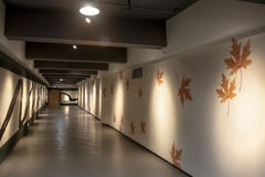 Art corridor in exhibition hall Stock Photography