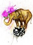 Art d'éléphant de bande dessinée Images stock