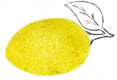 Art de fond de conception d'illustration d'art de conception de croquis d'illustration de jet d'aquarelle de fruit de citron illustration stock