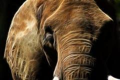 Art de fractale de sommeil d'éléphant asiatique Illustration de Vecteur