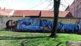 Art de graffiti en capitale de Croate de Zagreb clips vidéos