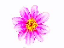 Art de pixel de fleur photos stock