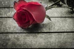 Art de Rose Images stock