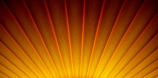 Art deco sunrise sunburst design royalty free stock photo
