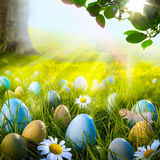 Art decorated easter eggs in the grass with daisies Stock Images