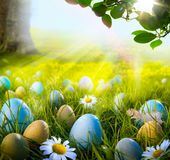 Art decorated easter eggs in the grass with daisies Stock Photos