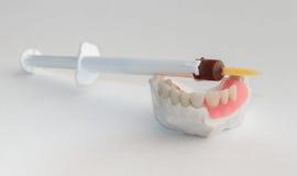 Art dentaire photos libres de droits