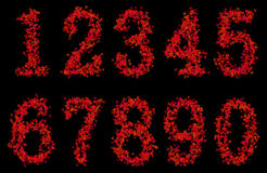 Art design arabic numerals fonts from maple leaf Royalty Free Stock Images
