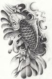 Fancy Carp Fish for Tattoo. Art design fancy carp fish Hand pencil drawing on paper Royalty Free Stock Image