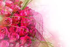 Art Design with roses Stock Photography