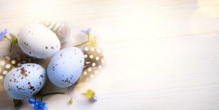 Art Easter ägg- och vårblommor; lycklig påskdag Royaltyfria Bilder