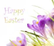 Art Easter-achtergrond met de lentebloemen Stock Foto