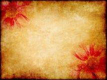 Art elegance flower paper Royalty Free Stock Photography