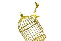 Art empty bird golden cage isolate background Royalty Free Stock Photos