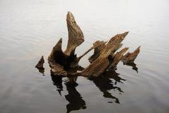Art en bois dans le lac Photo libre de droits