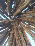 Art en bois de tipi de nature Photos stock