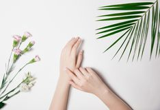 Art entretenant la peau des mains de la femme, manucure ordonnée avec le revêtement Pâle - fleurs roses et feuille vert clair con photo stock