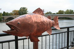 Art exhibit of a giant fish. At Art Prize in Grand Rapids Michigan Royalty Free Stock Photography