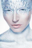 Silver makeup royalty free stock image