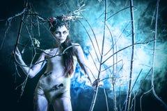 Art fantasy Royalty Free Stock Photography