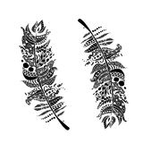 Art feather, zentangle style for your design Stock Images