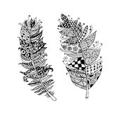 Art feather, zentangle style for your design Royalty Free Stock Image