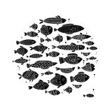 Art fish collection, sketch for your design Royalty Free Stock Photo