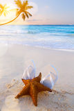Art flip flops and starfish on a tropical beach Royalty Free Stock Images
