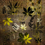 Art floral autumn background card Stock Photography