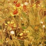 Art floral background. Grunge card Stock Photos