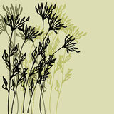 Art floral drawing graphic background Royalty Free Stock Image