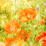 Art floral grunge graphic background Stock Photo