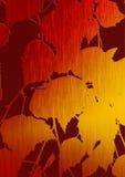 Art. Folhas do último em um vidoeiro. Imagens de Stock Royalty Free