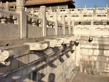 Art at forbidding palace. Dragon sculpture in Forbidding Palace Peking stock image