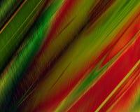 art forest genetic green rain red Στοκ φωτογραφίες με δικαίωμα ελεύθερης χρήσης