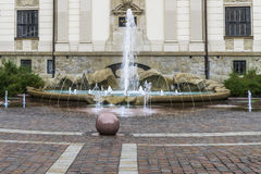 Art galleries building and fountain Stock Photography