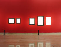 Art gallery. A row from empty pictures Royalty Free Stock Photography
