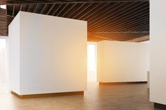Art gallery concrete floor, side view, toned. Empty art gallery interior. White walls, concrete floor and wooden ceiling. Side view. Concept of modern art Royalty Free Stock Photography