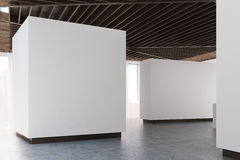 Art gallery concrete floor, wooden ceiling, side. Empty art gallery interior. White walls, concrete floor and wooden ceiling. Side view. Concept of modern art Royalty Free Stock Image